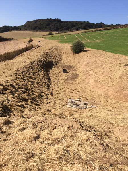 shf-ring-finger-basin-and-upper-areas-after-first-rain_10-17-2016